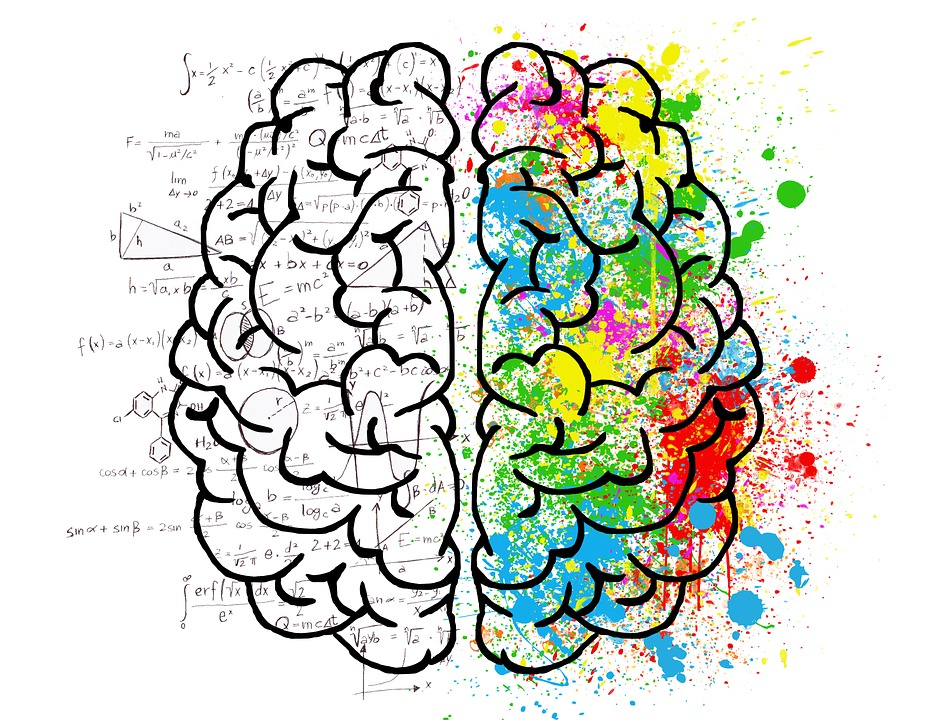 A brain viewed from above, the right hemisphere colourful and the left covered in equations.